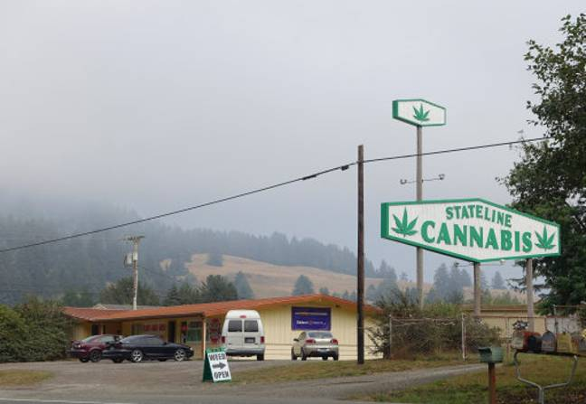 A sign saying 'Stateline Cannabis' can be seen on the Highway 101 near Brookings at the state border between Oregon and California. Credit: PA