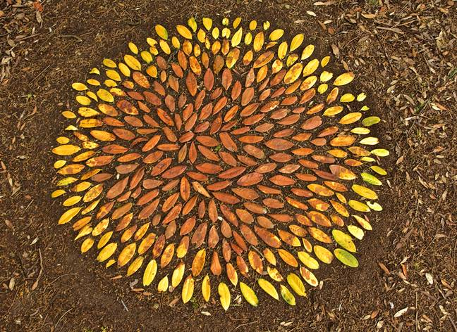 Leaf Art. Credit: SWNS