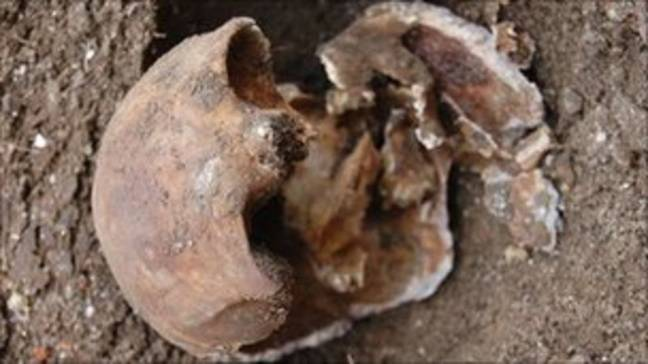 David Attenborough discovered a skull from a 19th century murder in his garden ' Credit: BBC