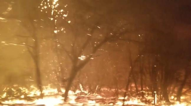 Terrifying Video Shows People Fleeing Raging California Wildfires. Credit: Brynn Chattfield
