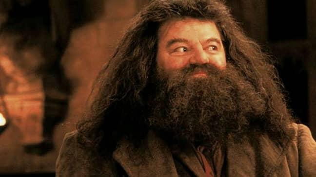 Robbie Coltrane as Hagrid in the Harry Potter films. Credit: Warner Bros