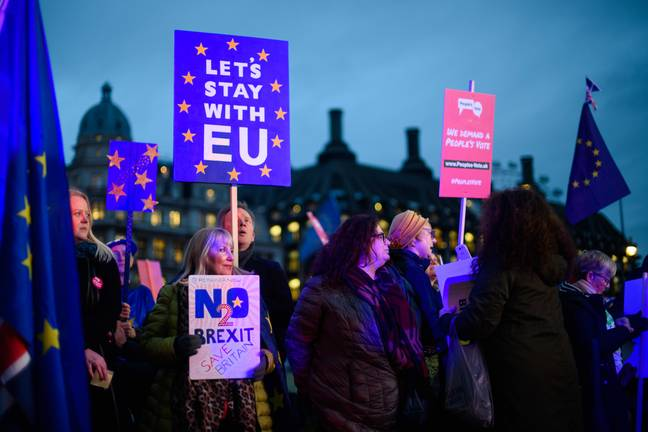 Remain protesters have been outside Parliament today. Credit: PA