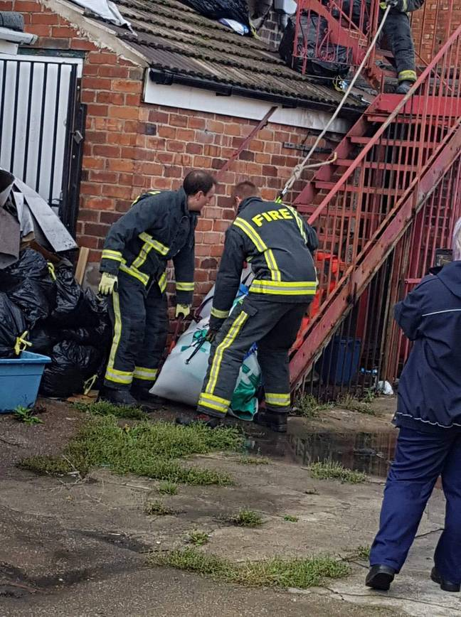 It took a team, including six firefighters, to safely remove the pig. Credit: SWNS
