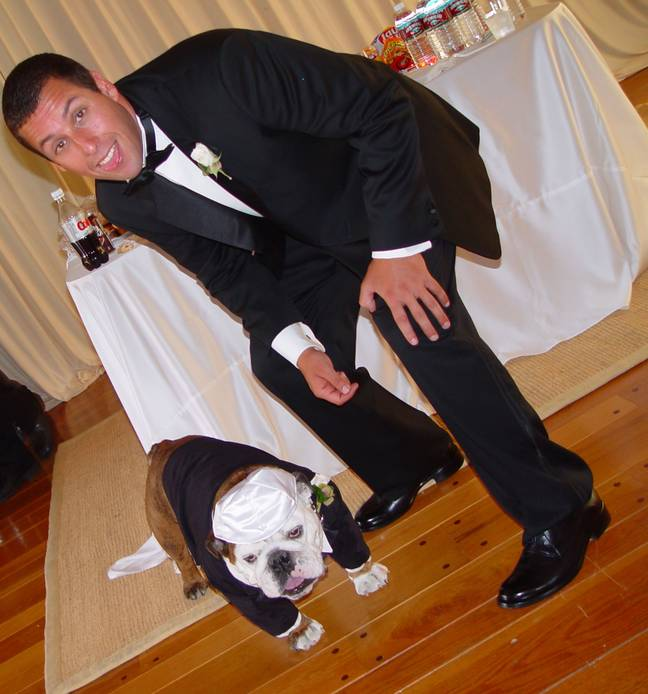 Meatball was Adam Sandler's best man at his wedding in 2003. Credit: Getty Images