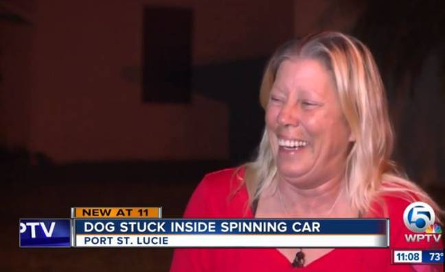 Amused neighbour Anna Sabol witnessed the dog's first solo drive. Credit: WPTV