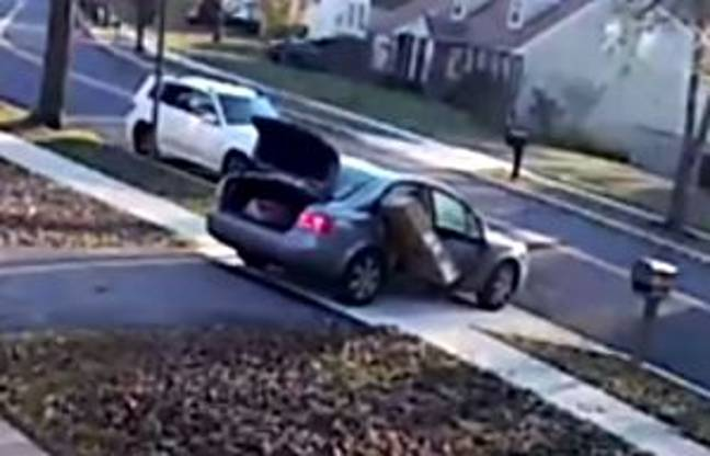 The thief leaves the TV half hanging out of the car as he drives away from the house he stole it from. Credit: Prince George's County Police Department