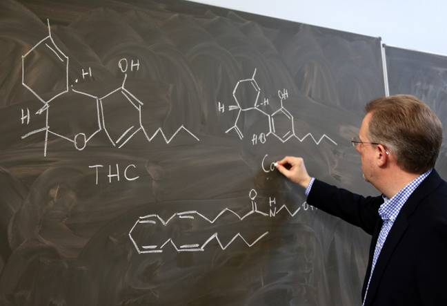 Burkhard Hinz, Director of the Institute for Toxicology and Pharmacology at the Rostock University Medical Center, explaining the chemical structures of cannabinoids. Credit: PA