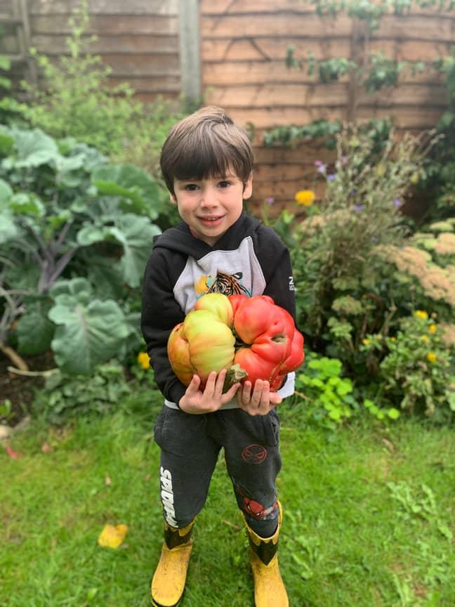 Douglas' son Stellan with the tomato. Credit: SWNS