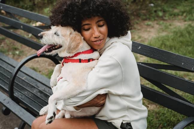 Having a dog obviously helps loads. Credit: Pexels/Samson Katt