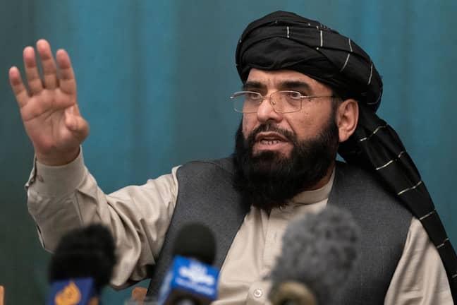 Suhail Shaheen, Afghan Taliban spokesman and a member of the negotiation team. Credit: Alexander Zemlianichenko/AP/Shutterstock