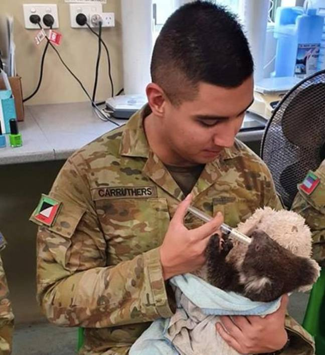Some of the heartwarming images show the koalas holding onto soldier's fingers as they are cradled and fed. Credit: Facebook/ The Australian Army