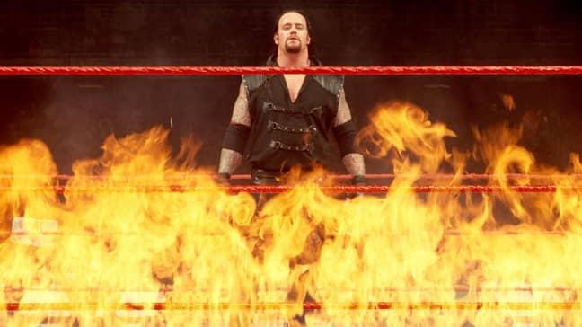 The Undertaker. Credit: WWE