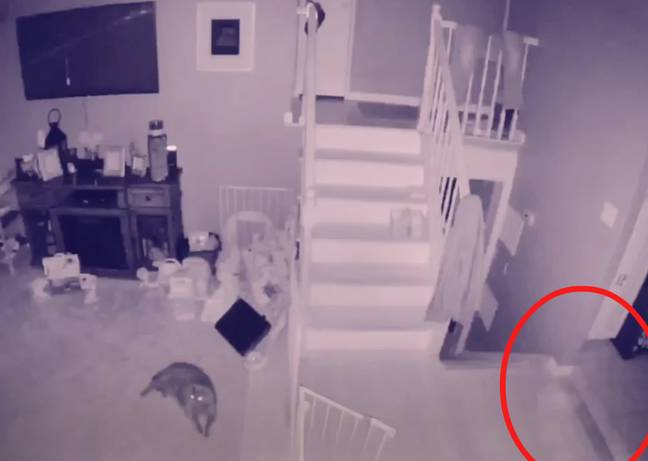 The outline of what appears to be a misty figure can be seen in the bottom right. Credit: Joey Nolan/YouTube