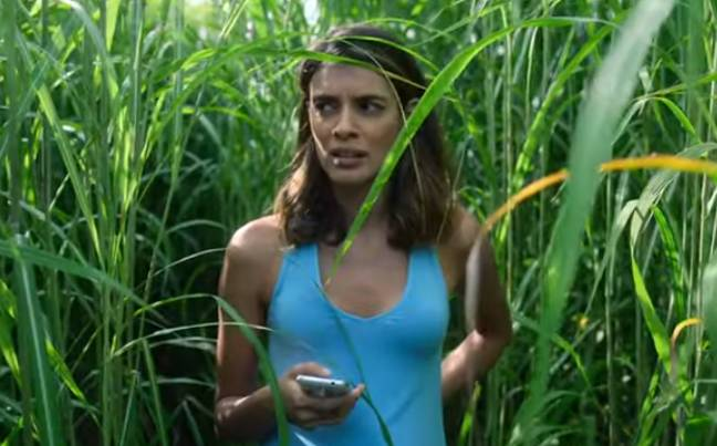 In The Tall Grass promises to be a claustrophobic nightmare. Credit: Netflix
