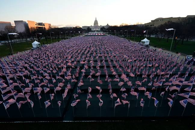 Around 200,000 flags have been placed on the National Mall. Credit: PA