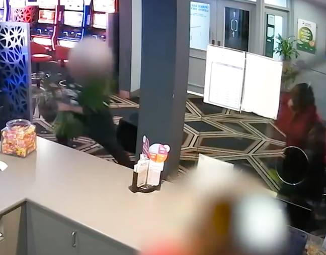 He even picked up a pot plant to stop the robbery. Credit: 9 News