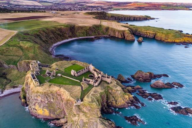 Seals On Scottish Coast. Credit: StoryTrender