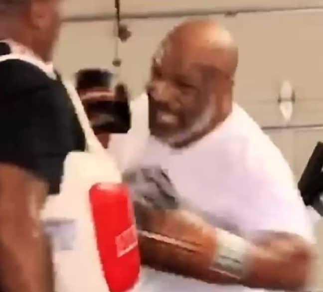 Tyson told fans 'I'm back'. Credit: Instagram/@miketyson