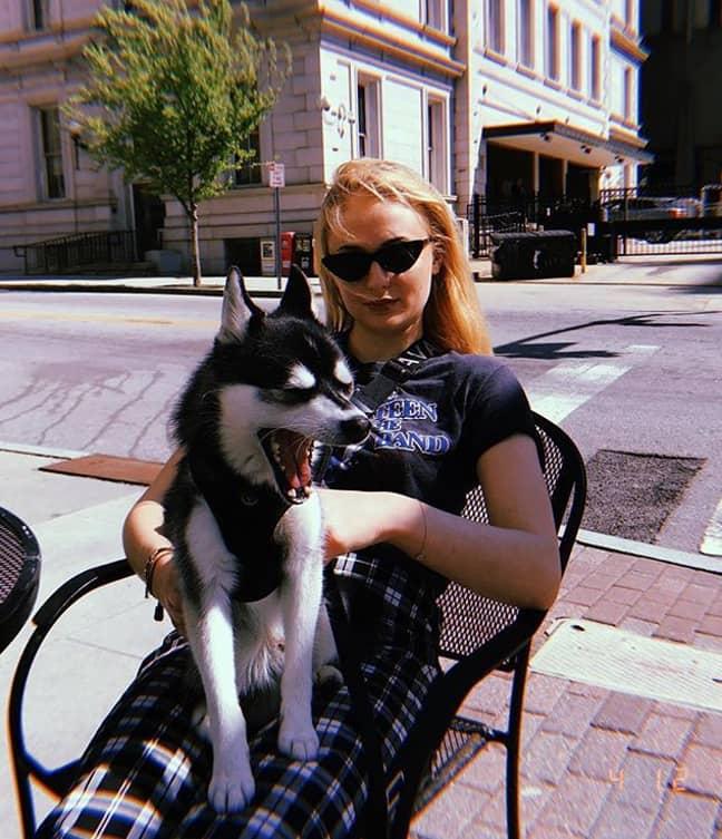 Turner with her other dog, Porky Basquiat. Credit: Sophie Turner/Instagram