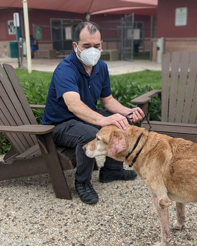 Credit: City of San Antonio Animal Care Services