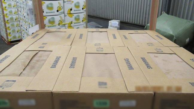 There was almost a tonne of coke hidden among the bananas. Credit: Border Force