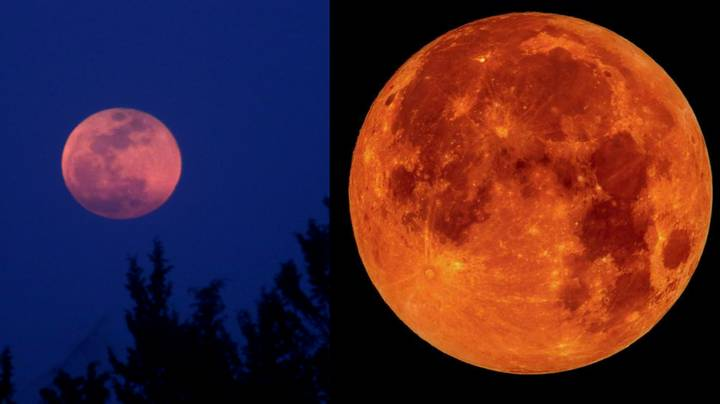 Blood Red Moon 'Will Bring The End Of The World Today'