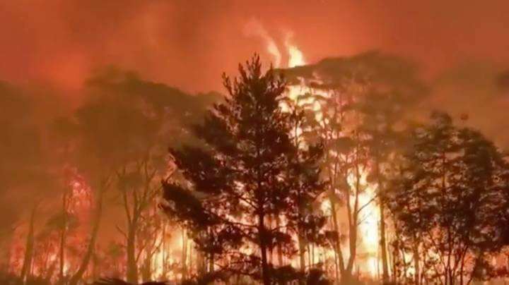 NSW Bushfires Have Burned Through Three Times More Land Than The Amazon Fires