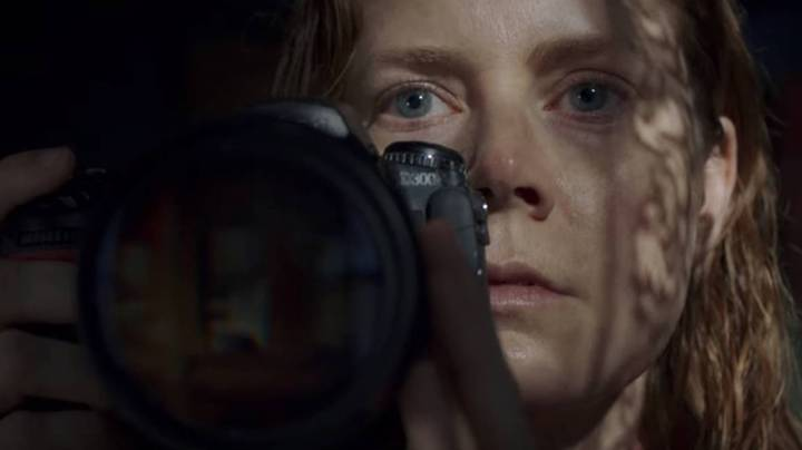 Netflix's New Film The Woman In The Window Is Dividing Viewers