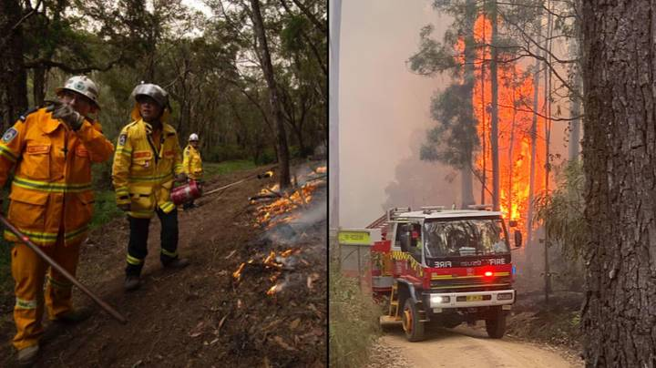 Fire Brigade Shuts Down Rumour That The Greens Are To Blame For Bushfires