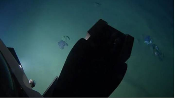 Scientist Travels 10,000 Metres Underwater And Finds Teddy Bear And Plastic Waste