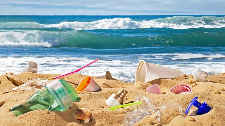 Queensland Moves To Ban Single-Use Plastic Straws, Cutlery And Plates To Save Marine Life