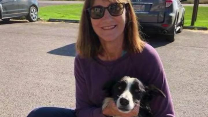 Woman Quits Job And Spends 57 Days Searching For Her Lost Dog