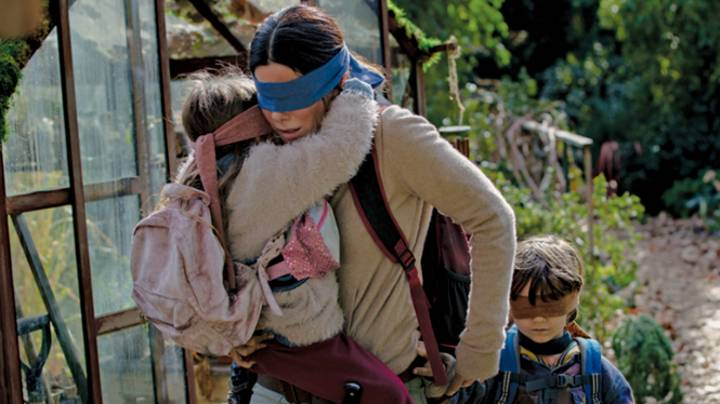 Netflix Begs Fans To Not Take Part In The 'Bird Box Challenge'