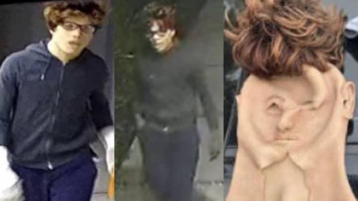 Black Man Disguises As White Guy To Commit 30 Burglaries