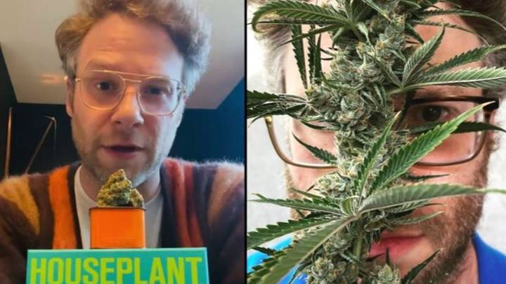 Seth Rogen Has Started His Own Weed Company