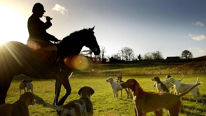More Than 80 Boxing Day Hunt Meets Have Been Planned