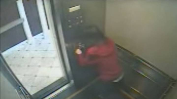 Footage Appears To Show Elevator Near Elisa Lam's Room At Cecil Hotel Going Off By Itself
