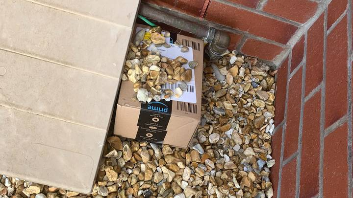 Woman Shares Hilarious Attempt To Hide Her Amazon Delivery