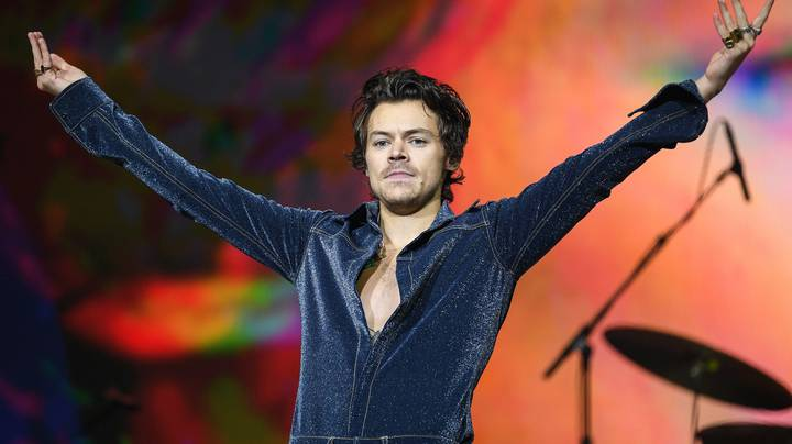 Harry Styles Confirms NSFW Meaning Behind Watermelon Sugar