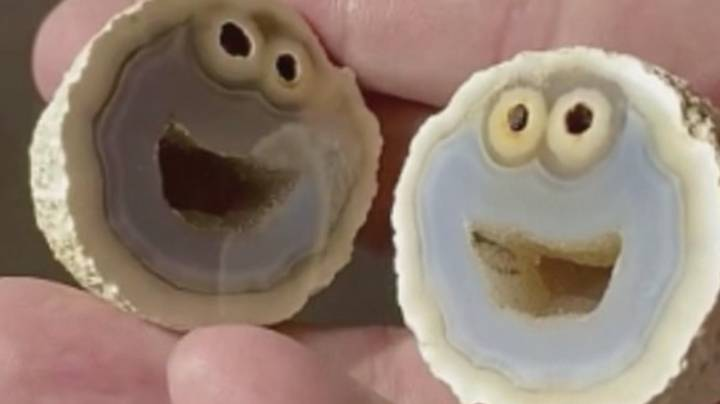 Geologist Finds Rare Formation Inside Rock That Looks Exactly Like The Cookie Monster