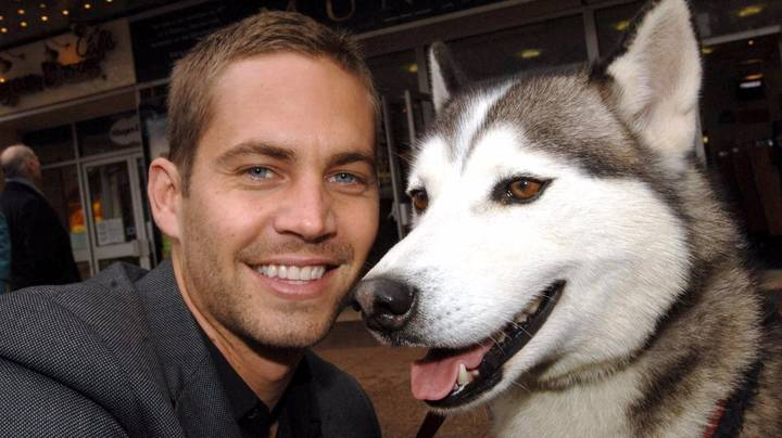 Paul Walker Would Have Turned 44 Today And His Charity Legacy Still Continues