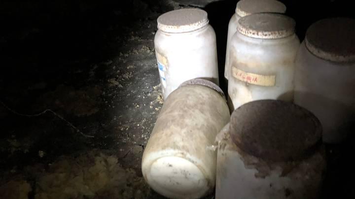 Jars Of Human Tongues Found Under Home In Florida