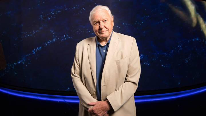 Sir David Attenborough Breaks Record For Instagram User To Reach One Million Followers Fastest