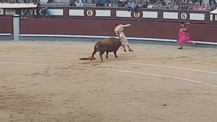 Video Shows Matador Being Gored In The Backside By A Bull