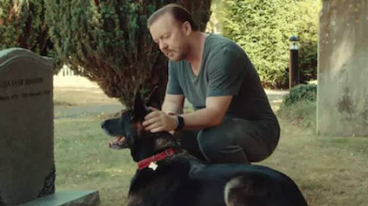 Ricky Gervais Thanks Fans As After Life Season Two Is Flooded With 10/10 Reviews