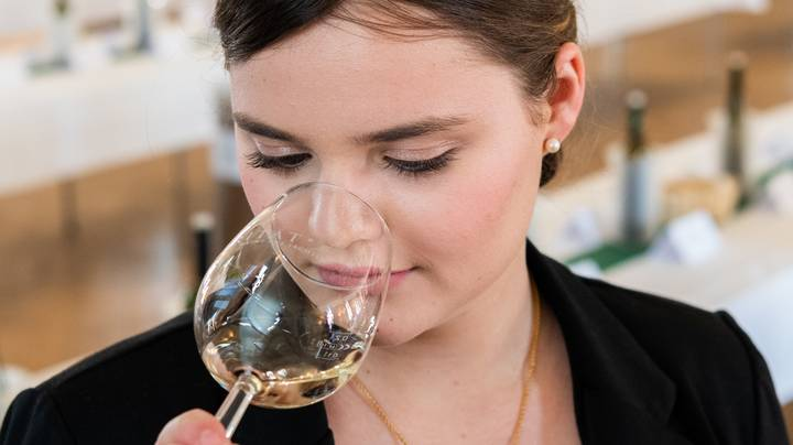 Climate Change is Souring the Australian Wine Industry
