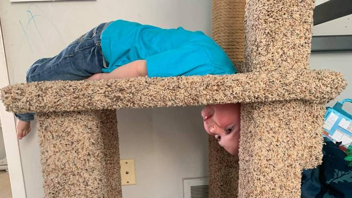 Firefighters Called To Rescue Boy Who Got His Head Stuck In Cat's Scratch Post
