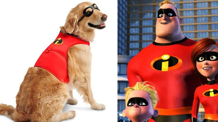 Disney Is Selling 'Incredibles 2' Costumes For Superhero Dogs