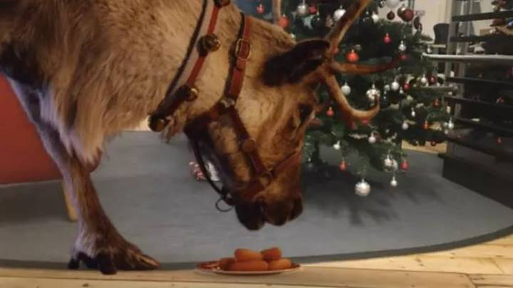 Parents Can Film Santa's Reindeer During Their Visit This Christmas With New McDonald's App