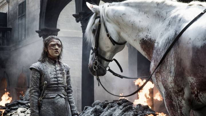 Game Of Thrones David Benioff And D.B. Weiss Will Be 'Very Drunk' When Finale Airs